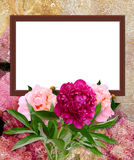Peony and photo frame royalty free illustration