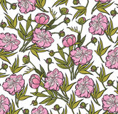 Peony. Realistic isolated flowers pattern. Vintage baroque background. Wallpaper. Drawing engraving. Stock Photo