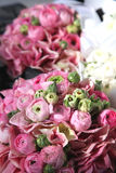 Peony rose. A wedding bouquet of pink peony roses Stock Photo