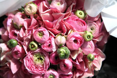 Peony rose. A wedding bouquet of pink peony roses Stock Image