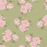 Peony seamless pattern Stock Images