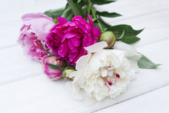 Peony. Some peonies on the white wood Royalty Free Stock Image