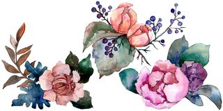 Peony and succulent bouquet floral flower. Watercolor background set. Isolated bouquet illustration element. Peony and succulent bouquet floral botanical flower royalty free illustration