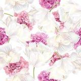 Peony tulip pattern Royalty Free Stock Image