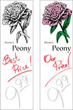 Peony - Two Price Tags. For florist shop Stock Photo