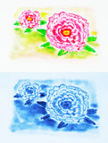 Peony water color drawing Royalty Free Stock Images