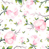 Peony. Watercolor pattern with the peony Stock Photography
