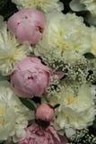 Peony wedding bouquet Royalty Free Stock Image