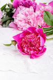 Peony on a white table royalty free stock image