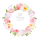 Peony, wild rose, orchid, carnation, camellia, blue berries and green leaves vector design round frame. Royalty Free Stock Images