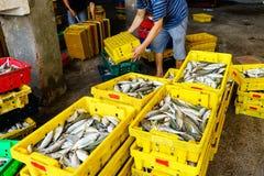People& x27; ежедневная жизнь s, рыбацкий поселок с много рыбами в корзине рыбной ловли на традиционном рыбном базаре на длинном  Стоковые Фото