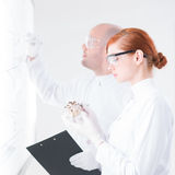 People analyzing in a lab Stock Images