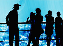 People in the aquarium. Silhouettes stock photo