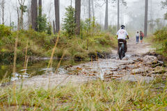 Free People Are Biking Pass Canal At National Park Royalty Free Stock Photo - 93807385