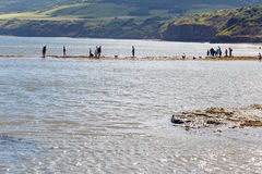 People on beach, fishing and crabbing. In Robin Hoods Bay, Stock Image