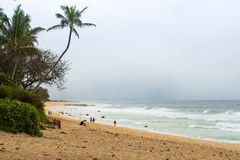 North Shore Beach, Oahu, Hawaii Royalty Free Stock Photo