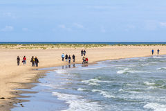People on a bech. People who walk on the sandy beach Royalty Free Stock Photography