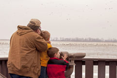 Dad and sons watching birds Royalty Free Stock Photography