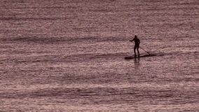 People on board into the sea sup. The man on the rowing board is swimming in the sea at dawn. the sun is not yet risen stock video