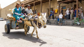 People in BUKHARA, UZBEKISTAN stock images