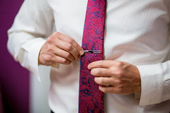 People, business, fashion and clothing concept - close up of man in shirt dressing up and adjusting purple tie with clasp Royalty Free Stock Image