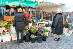 People buy flowers in the market  in the Dutch town Den Bosch. Stock Image