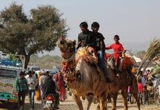 People on a Camel at Pushkar Camel Fair Royalty Free Stock Photos