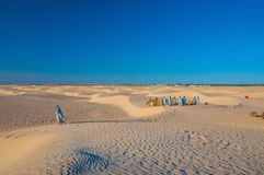 People and camels in Sahara desert, Tunisia, North Africa royalty free stock photography
