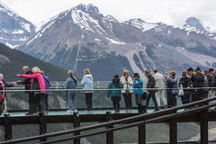 People on the Canadian Skywalk looking at the Rockies Royalty Free Stock Image