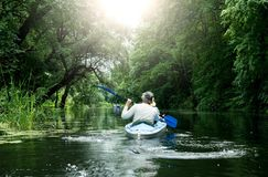 Canoeing in the forest Royalty Free Stock Photo