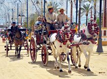 People in carriage horses Stock Image