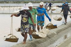 People carry salt  at the salt farm in Huahin, Thailand. Royalty Free Stock Photo