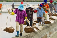 People carry salt at the salt farm in Huahin, Thailand. Stock Photo