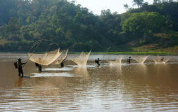 People catch fish by lift net on ditch Royalty Free Stock Image