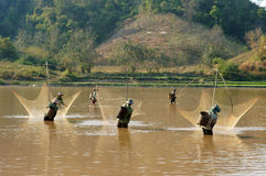People catch fish by lift net on ditch Stock Photography