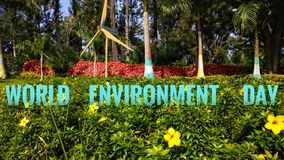 World Environment Day. People celebrate World Environment Day WED in many different ways all over the world: planting trees, cleaning up local beaches, animal stock photo