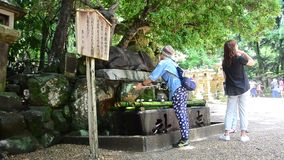 People ceremony shinto style called Omairi by temizu ritual to visiting a shrine stock video