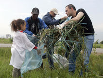 People cleaning grassland Stock Photography