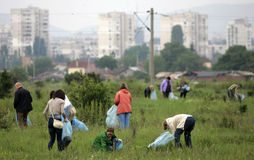 People cleaning grassland Stock Photo