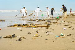People cleaning polluted beach. Bali. People cleaning trashy polluted with garbage ocean beach. Bali island, Indonesia stock images