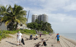 People Cleaning Up the Beach. Fort Lauderdale, FL, USA - September 20, 2014: People picking up beach trash north of Oakland Park Boulevard in the yearly Ocean Royalty Free Stock Photo