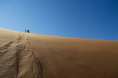 People Climbing Down Desert Dune into Sossusvlei Salt Pan Stock Photos
