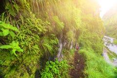 People climbing in mountains Annapurna trekking Royalty Free Stock Photo
