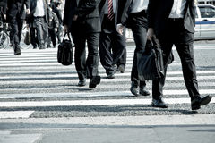 People commuting in rush hour at zebra crossing. Tokyo japan Royalty Free Stock Photos