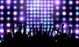 People at the concert. Stock Image