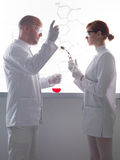 People conducting lab experiment Royalty Free Stock Photo