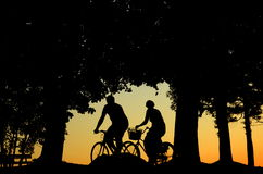 People Cycling Stock Image