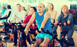 People cycling in a gym Stock Image