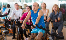 People cycling in a gym. Group of elderly active people cycling in a gym Royalty Free Stock Photography