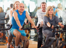 People cycling in a gym. Group of mature active people cycling in a gym Royalty Free Stock Photo